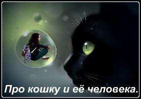 Про кошку и её человека стихи