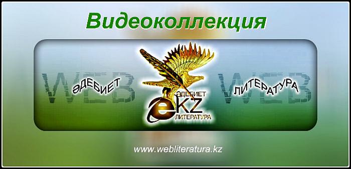 webliteratura_video700337