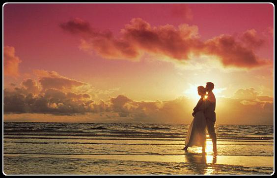 А любовь остаётся жить